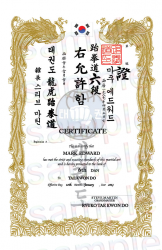 Vertical Korean Arts Certificate image