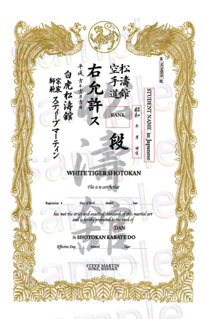 How to order Semi custom Tae Kwon Do certificate: It is showing optional Individual insertion space with blue square.  Rea seal image is additional option.