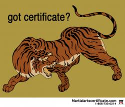got certificate