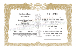 Generic Certificate for Korean Martial Arts